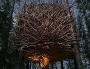 Tree Hotel - The Birds Nest Treehouse