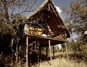 Ngong Luxury Treehouse