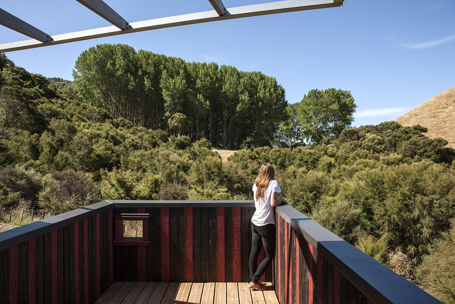 Longbush Ecosanctuary Welcome Shelter - Sarosh Mulla Design - New Zealand - Rooftop Terrace - Humble Homes