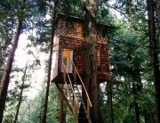 Tiny Treehouse - Pender Island - Geoff de Ruiter - Exterior - Humble Homes