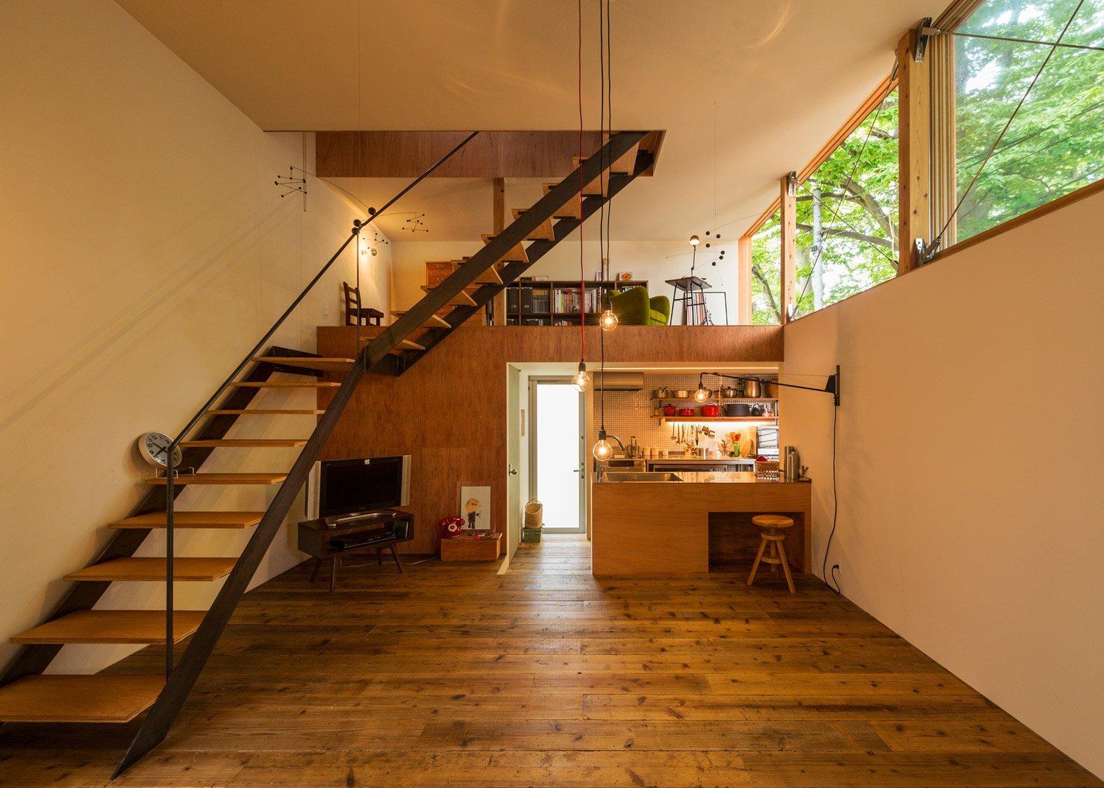House to Catch a Tree - Takeru Shoji Architects - Japan - Living Area - Humble Homes
