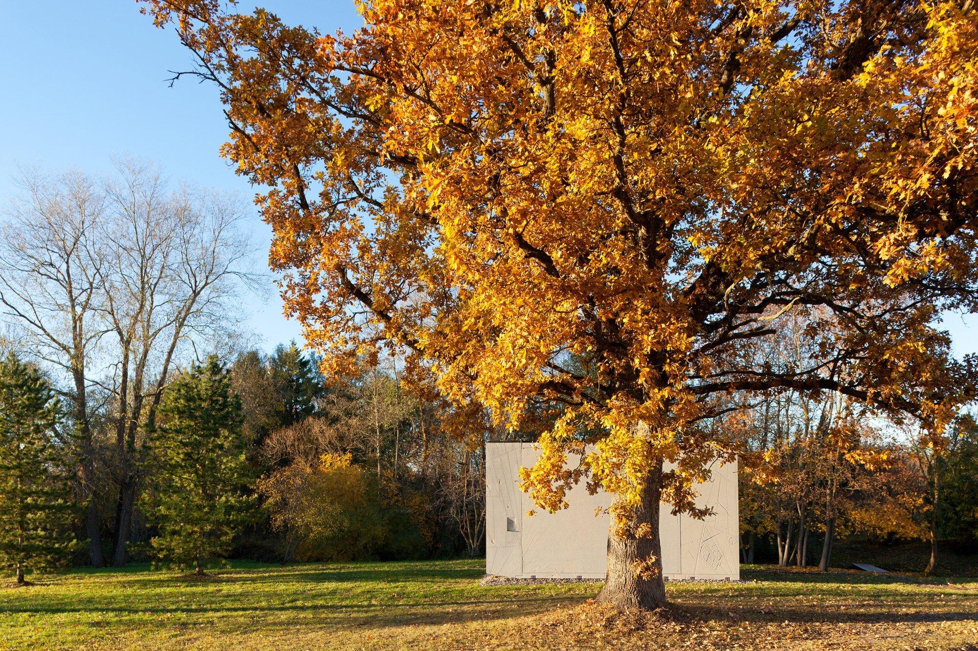 KODA - Kodasema - Estonia - Exterior 2 By Tree - Humble Homes