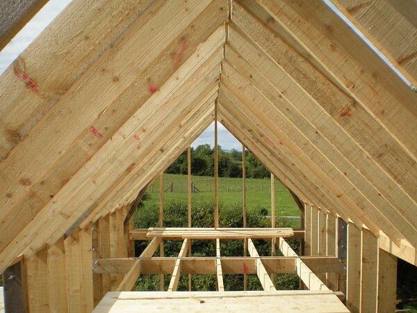 Interior Tiny House Framing
