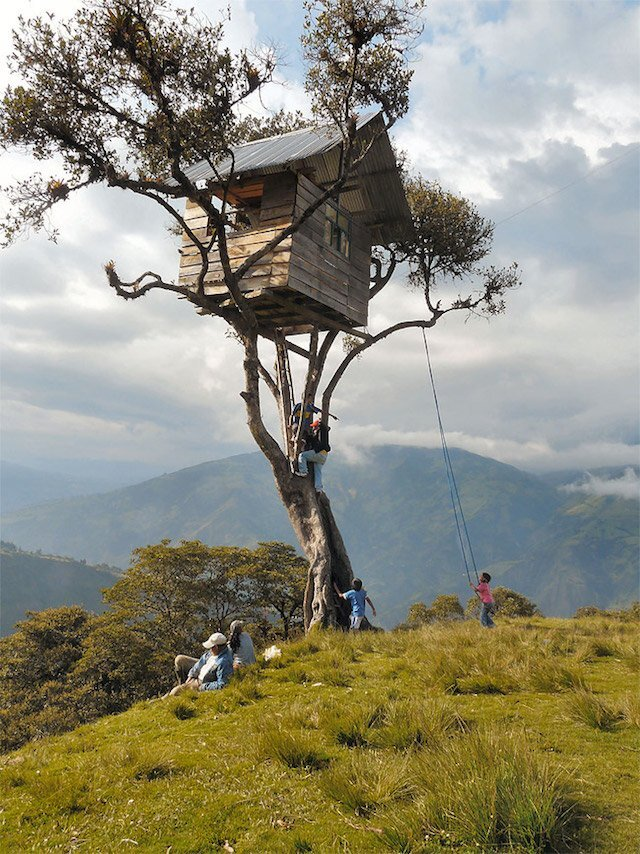 Treehouse Swing at Casa Del Arbol - The Treehouse - Humble Homes