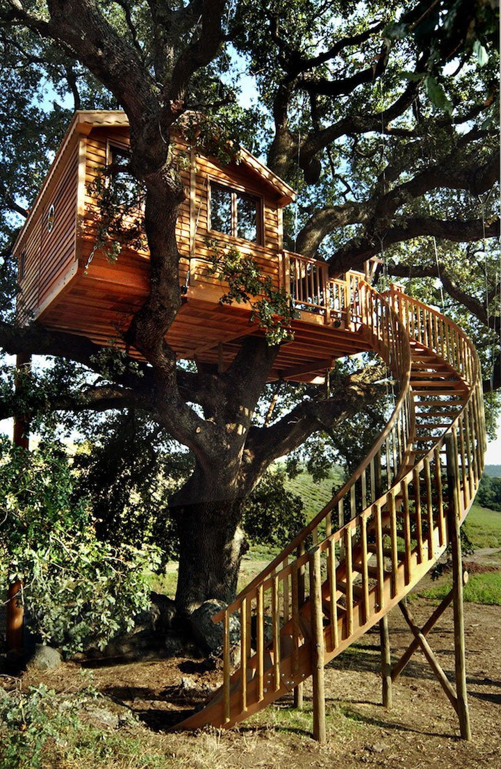 Lavender Treehouse - La Cabane Perchee - Italy - Treehouse Staircase - Humble Homes